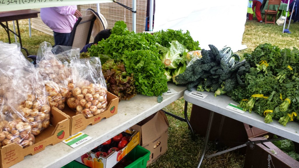Glanford Greenhouse at James Bay Market 2014-1