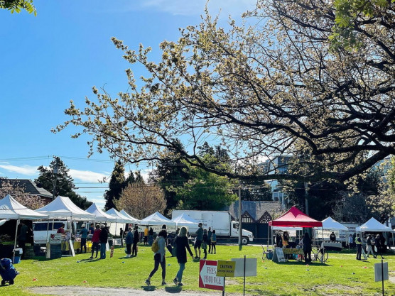 The James Bay Community Market is in full swing – Come on down – May 8th – 9 am to 3 pm