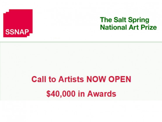 Call to Artists NOW OPEN – $40,000 in Awards